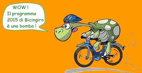 Copia di tartaruga-della-bici-8282067